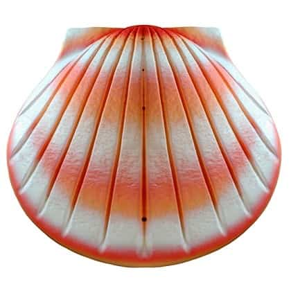 Shell Biodegradable Urn Coral