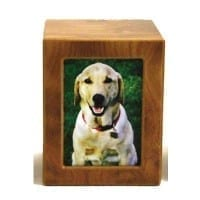 Pet Photo Urn Natural – Medium