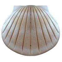 Pearl Shell Biodegradable Urn
