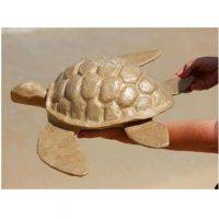 Biodegradable Sea Turtle Urn
