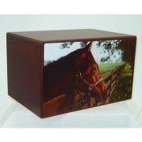 Equine Beauty Horse Urn