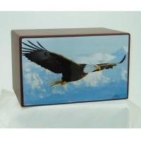 Soaring American Bald Eagle Urn
