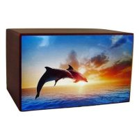 Dolphins are Free Urn